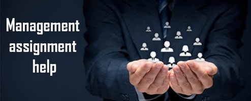 Management assignment help online