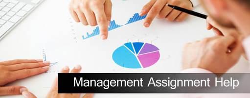 Top Management assignment help online