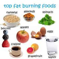 Fat burners diet