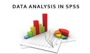 TOP SPSS assignment help online