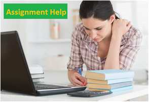 Seeking online assignment help
